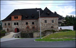 Burg Wildstein in Skalná
